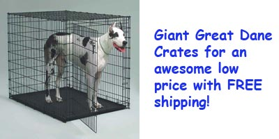Giant crate for Great Danes.