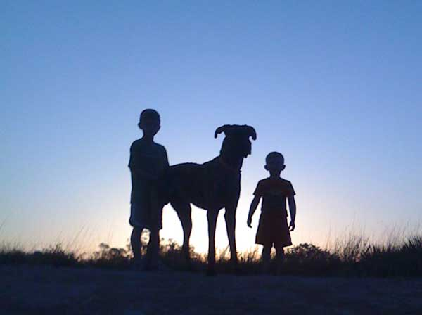 Great Dane with children at dusk silhouette.